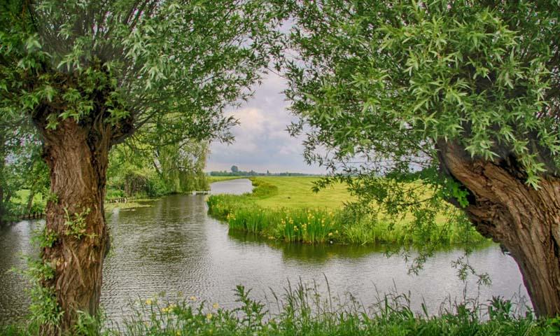 Noordwand Holland Fotobehang Woerden 7590