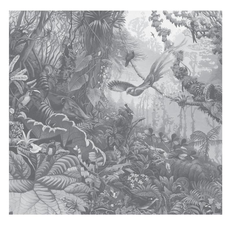 KEK Amsterdam Flora & Fauna behang Tropical Landscapes WP-604