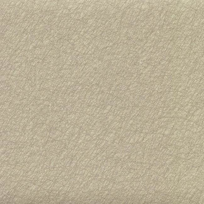 York Wallcoverings Color Library II behang CL1887 Tossed Fibers