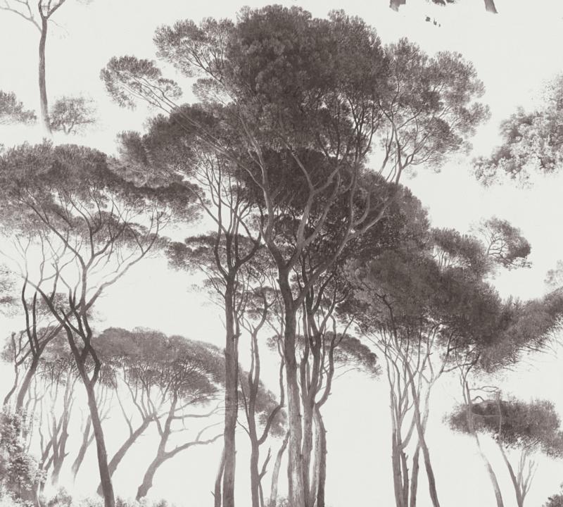 AS Creation History of Art behang 37651-1