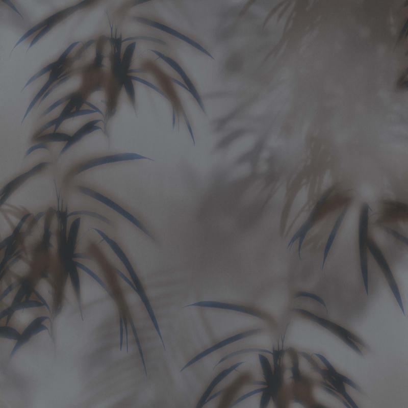 BN Dimensions behang 219545