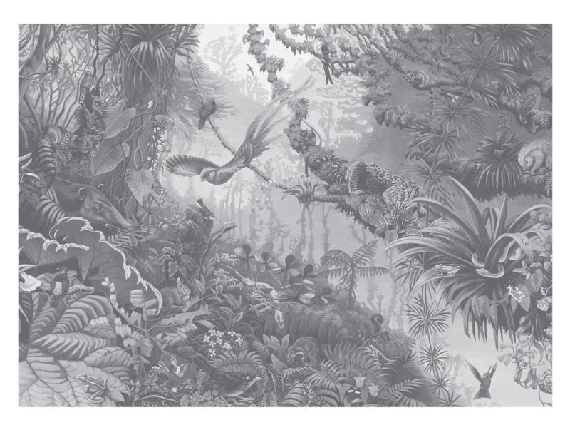 KEK Amsterdam Flora & Fauna behang Tropical Landscapes WP-605