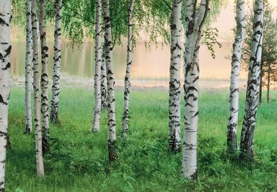 Idealdecor Nordic Forest 290