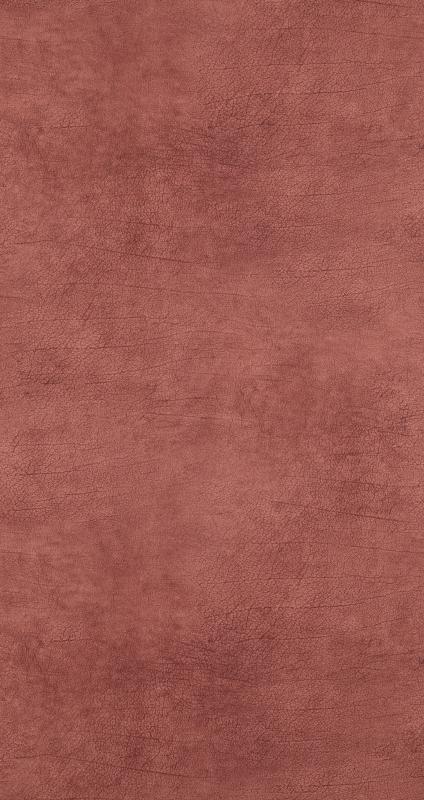 BN Curious behang 17927