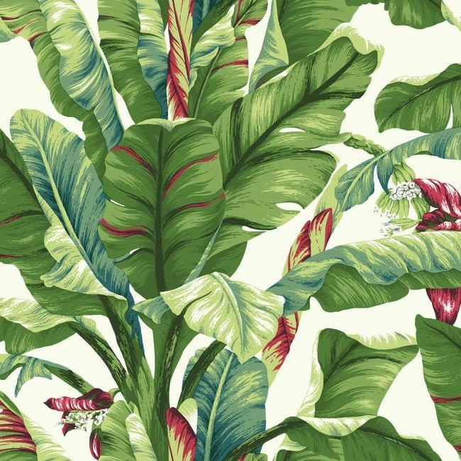 York Wallcoverings Ashford Tropics behang AT7068 Banana Leaf