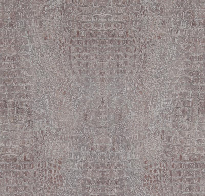 BN Curious behang 17952