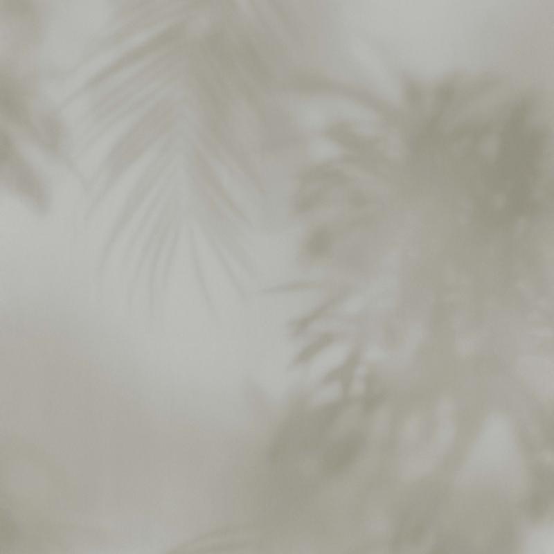 BN Dimensions behang 219551