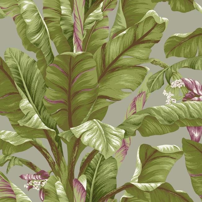 York Wallcoverings Ashford Tropics behang AT7069 Banana Leaf