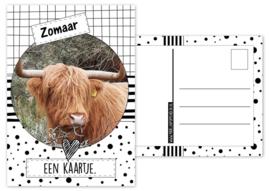 A6 Kaart met afbeelding hooglander met tekst ''Zomaar een kaartje''.