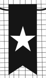klein kaartje met afbeelding ster