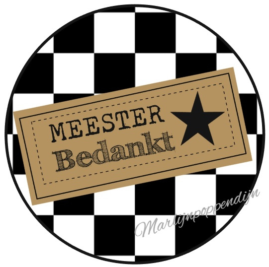 Sticker met tekst ''Meester bedankt'' 6 cm zwart wit geblokt.