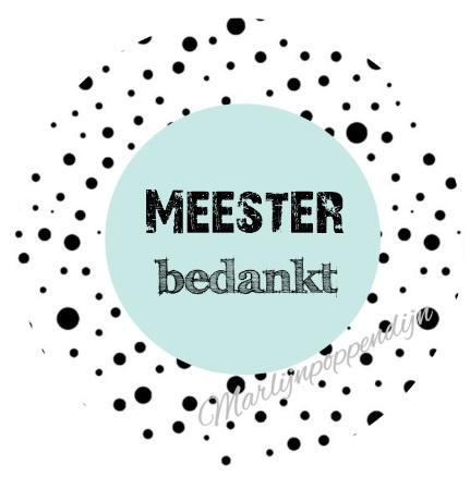 Sticker met tekst ''Meester bedankt'' 6 cm doorsnee mint.