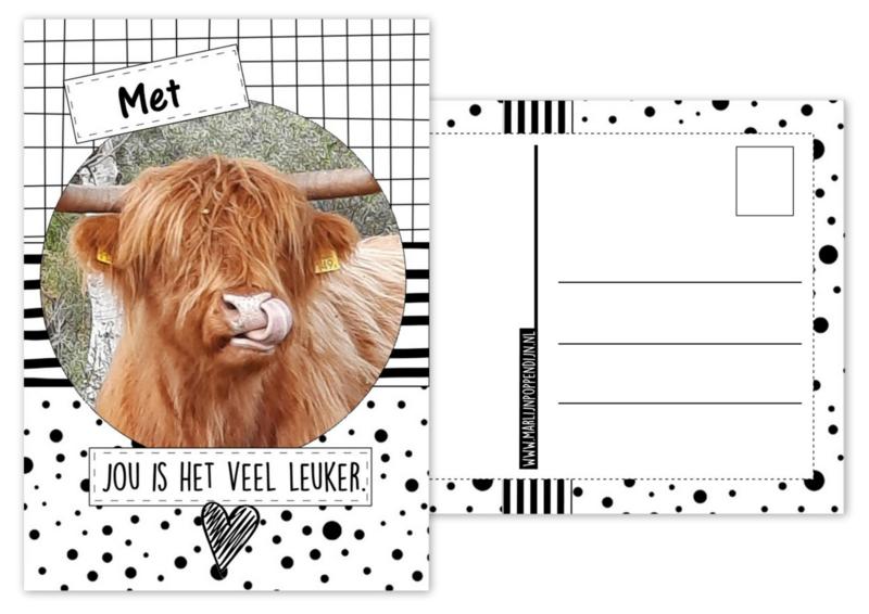 A6 Kaart met afbeelding hooglander met tekst ''Met jou is het veel leuker''.