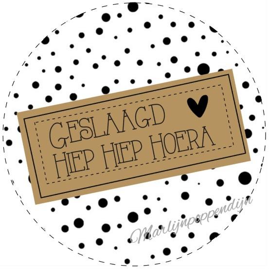 Sticker met tekst ''Geslaagd Hiep Hiep Hoera. 4 cm.