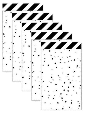 5 cadeau zakjes zwart wit gestipt 12 bij 19 cm.
