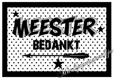 Meester sticker met tekst ''Meester bedankt'' 6 bij 8 cm.