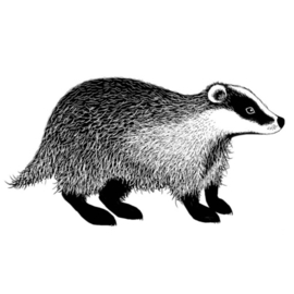 Lavinia Badger