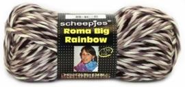 Roma Big Rainbow Kleur 22  200gr  120meter