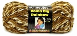 Roma Big Rainbow kleur 21 200gr 120meter