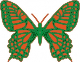 Exotic butterfly Lg#3  DL119