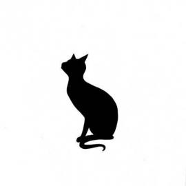 Lavinia; Cat