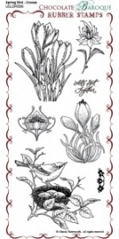 Spring Bird Crocus Rubber Stamp sheet - DL 0506