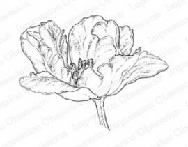 IO Elegant Tulip H6387