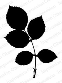 IO Stamps Rose Leaf Branch F8199
