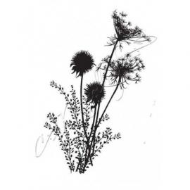 Rubber stamp - Dandelion SOLO23