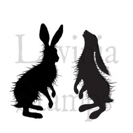 Lavinia Woodland Hares