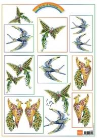 MD knipvel Birds Pink IT555