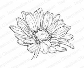 IO Large Lovely Daisy Stem G6386