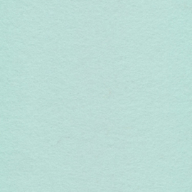 (VI-009a) Vilt lapje - licht mint