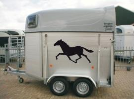 Set van twee paardenstickers 3