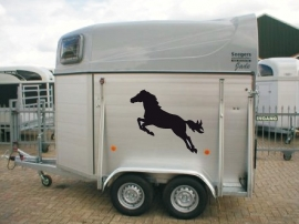 Set van twee paardenstickers 4