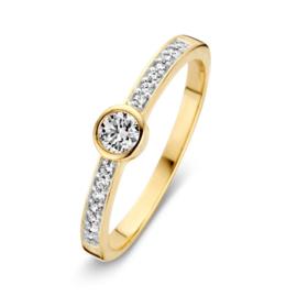Excellent Jewelry Geelgouden Ring met Zirkonia's