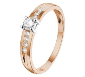 Bicolor Gouden Ring met Zirkonia's
