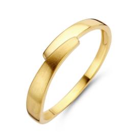 Excellent Jewelry Dames Ring van Geelgoud met Mat Uiteinde