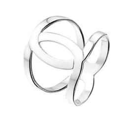 Ronde Overlappende Dubbele Ring van Gepolijst Zilver