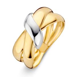 Excellent Jewelry Geelgouden Ring met Witgouden Element