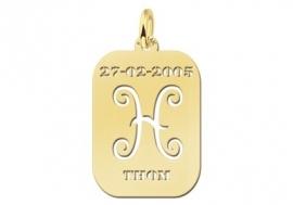 Names4ever Astrologie Vissen Goud Hanger GHS012