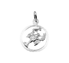 Ronde Kreeft Sterrenbeeld Bedel van Zilver 10.14505