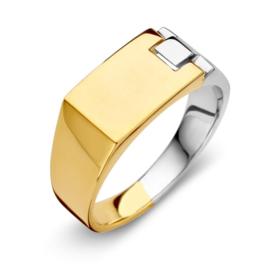 Excellent Jewelry Geelgouden Dames Ring met Witgouden Uiteinde
