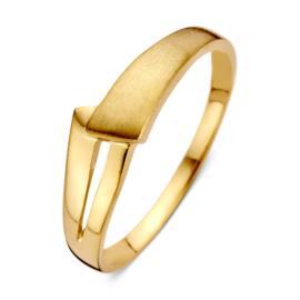 Excellent Jewelry Geelgouden Dames Ring met Mat Uiteinde