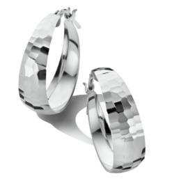Gediamanteerde Oorringen van Zilver 22 mm