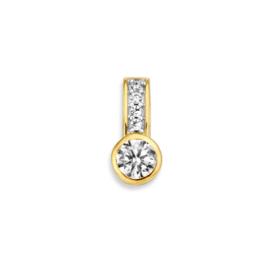 Excellent Jewelry Zirkonia Hanger van Geelgoud