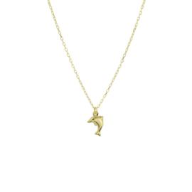 14K Geelgouden Collier met Dolfijn