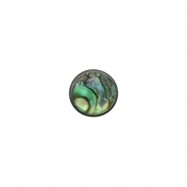 Abalone in Resin Insignia Munt van 14mm