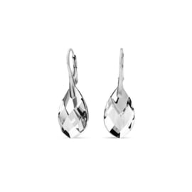 Silver Drop Oorhangers met Kleurloze Kristallen