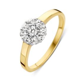 Excellent Jewelry Geelgouden Dames Ring met Rond Witgouden Kopstuk